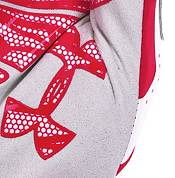 Under Armour Youth Motive Undeniable Batting Gloves product image