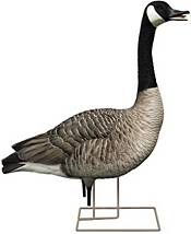 Avian-X Fusion Honker Decoys - 6 Pack product image
