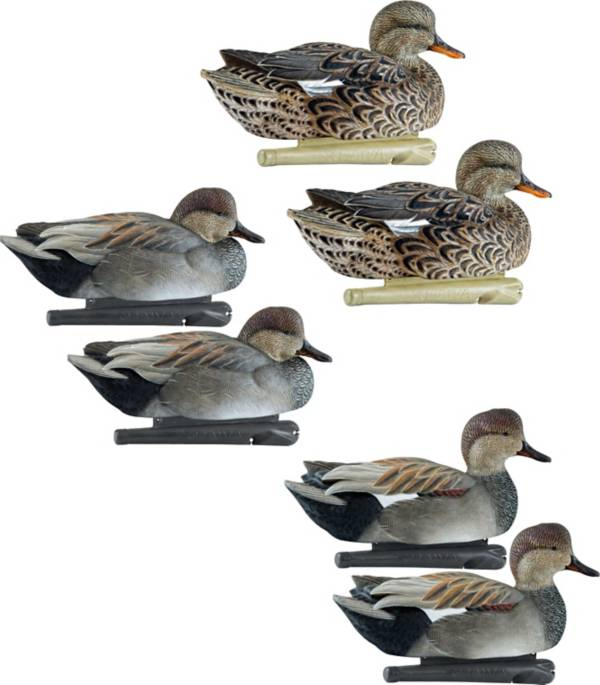 Avian-X Top Flight Gadwall Decoys - 6 Pack product image