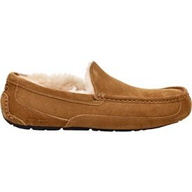 f6a82385223 UGG Australia Men's Ascot Slippers