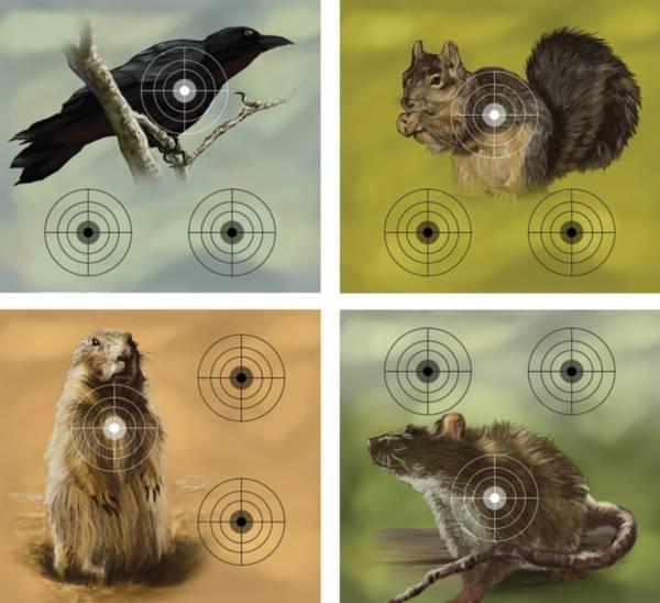 Crosman Varmint Paper Targets product image