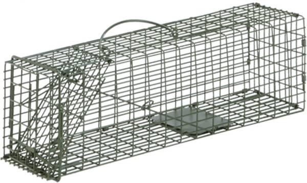 Duke #1 Single Door Cage Trap product image