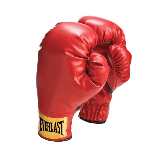 Everlast Youth Boxing Gloves product image