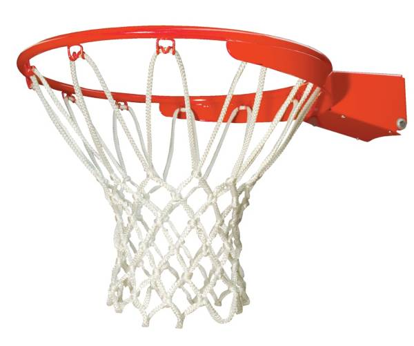 Lifetime Slam-It Pro Basketball Rim product image