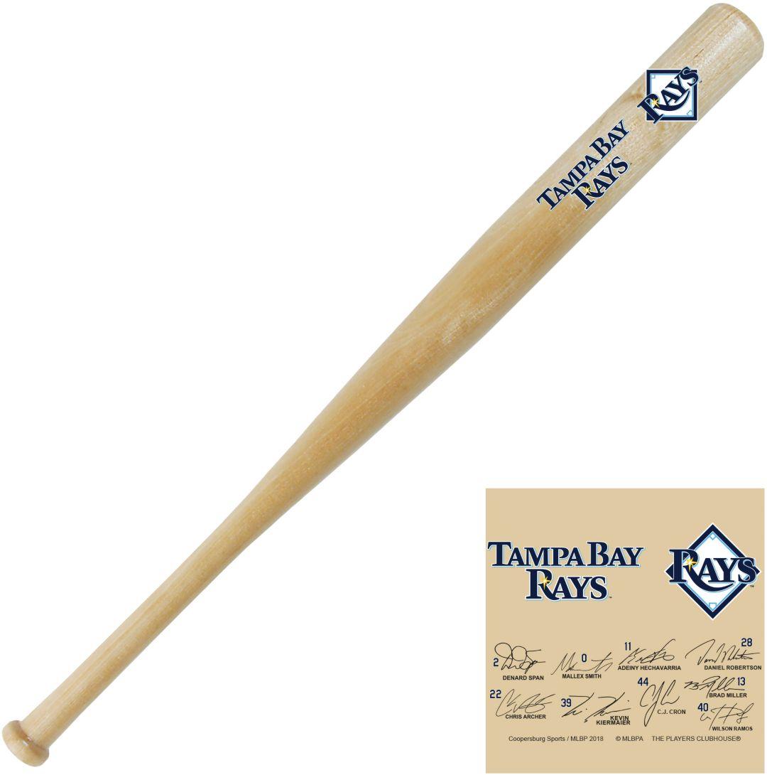 Coopersburg Sports Tampa Bay Rays Signature Mini Bat