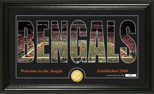 """Highland Mint Cincinnati Bengals """"Silhouette"""" Panoramic Bronze Coin Photo Mint product image"""