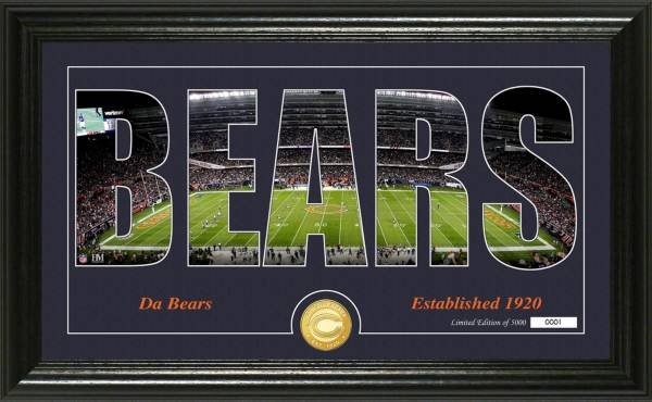 """Highland Mint Chicago Bears """"Silhouette"""" Panoramic Bronze Coin Photo Mint product image"""