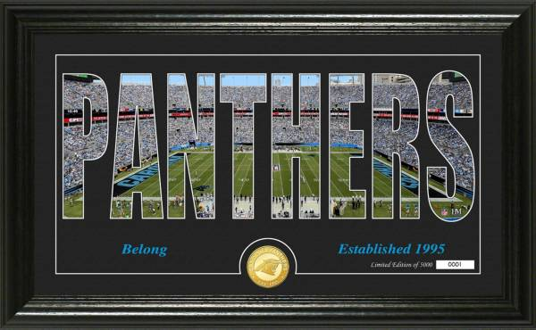 "Highland Mint Carolina Panthers ""Silhouette"" Panoramic Bronze Coin Photo Mint product image"