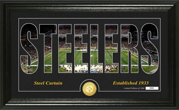 "Highland Mint Pittsburgh Steelers ""Silhouette"" Panoramic Bronze Coin Photo Mint product image"