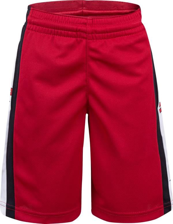 Jordan Boys' Dry Air Rise Shorts product image
