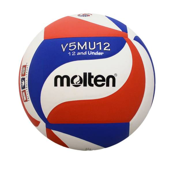 Molten Youth Indoor Volleyball product image