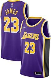 reputable site 03dd2 5f66a Nike Men's Los Angeles Lakers LeBron James #23 Purple Dri-FIT Swingman  Jersey