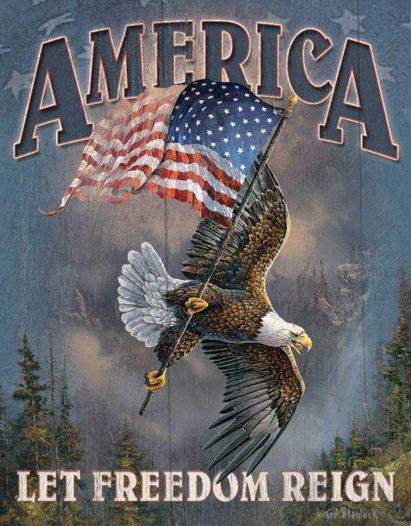 America Let Freedom Reign Tin Sign product image