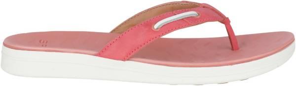 Sperry Women's Adriatic Flip Flops product image