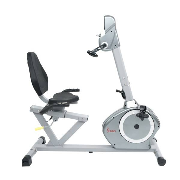 Sunny Health & Fitness SF-RB4631 Recumbent Bike with Arm Exerciser product image
