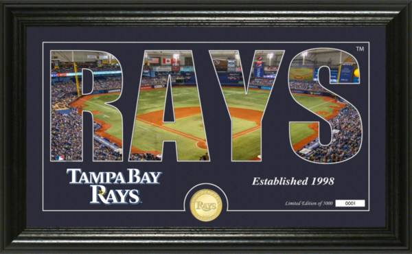 Highland Mint Tampa Bay Rays Silhouette Panoramic Bronze Coin Photo Mint product image