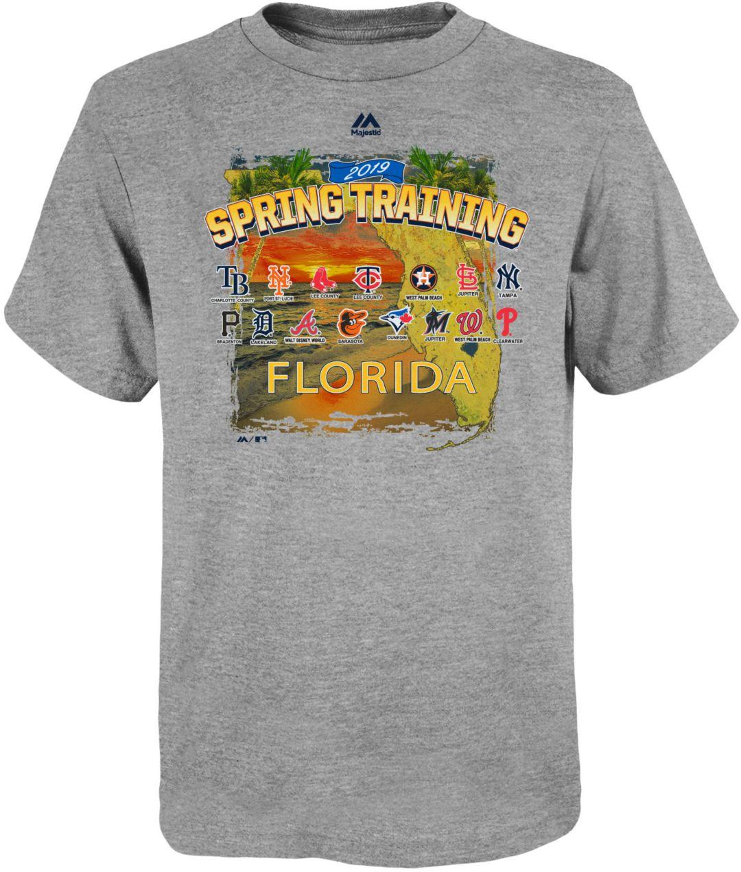 3f8355f47 Majestic Youth 2019 Spring Training Grapefruit League Grey T-Shirt.  noImageFound. 1