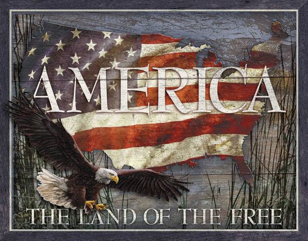 America The Land of the Free Tin Sign product image