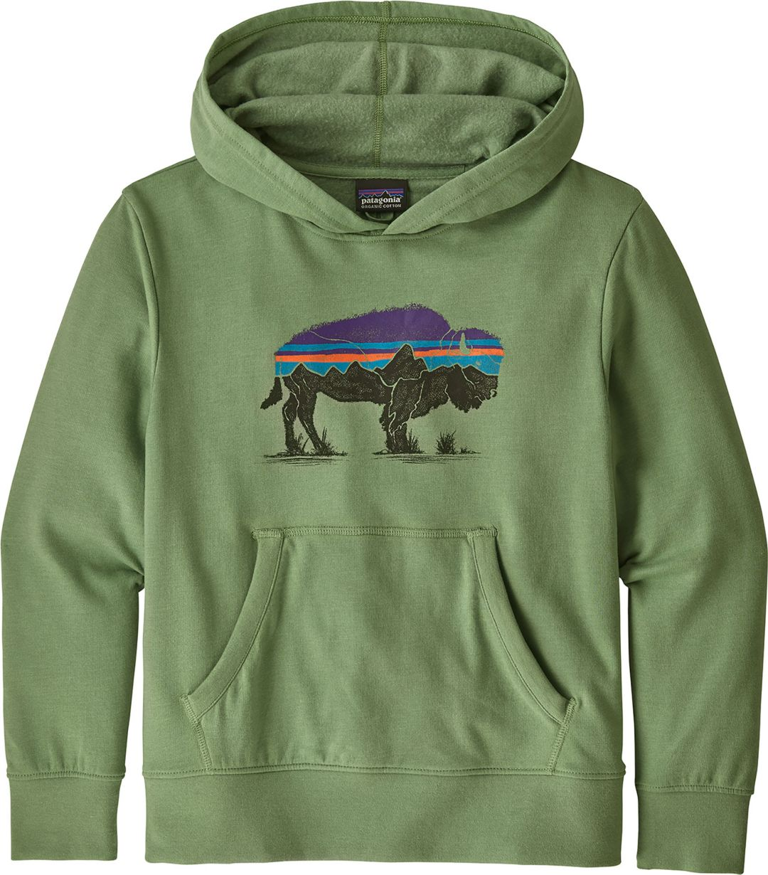 c9480d173 Patagonia Boys' Lightweight Graphic Hoodie | DICK'S Sporting Goods