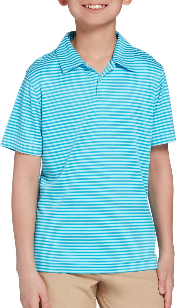 DSG Boys' Bar Stripe Golf Polo product image