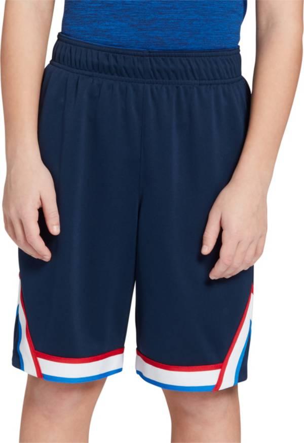 DSG Boy's Heritage Basketball Shorts product image