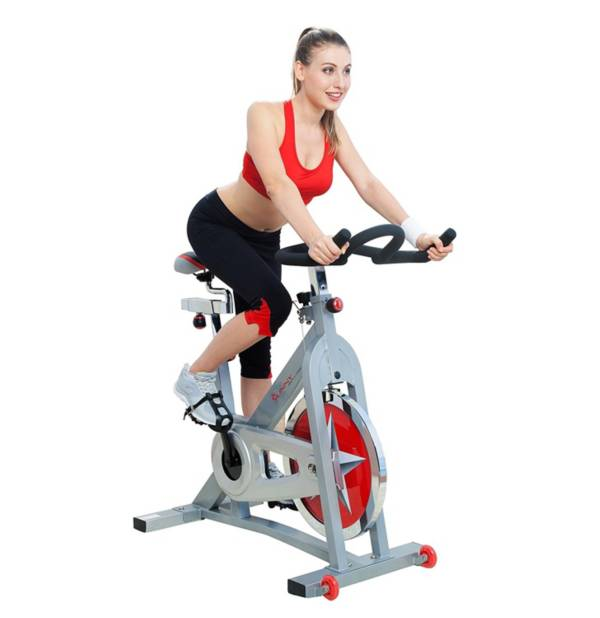 Sunny Health & Fitness Flywheel Chain Drive Pro Indoor Bike product image