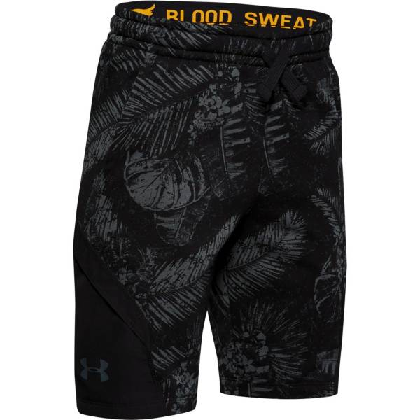 Under Armour Boys' Project Rock Terry Fleece Shorts product image