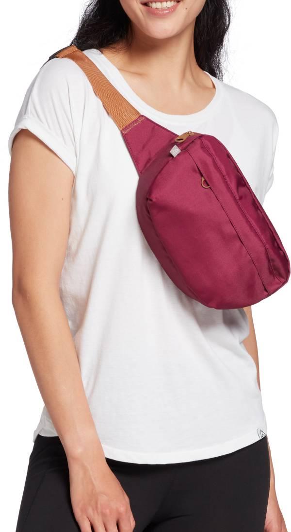 Alpine Design Hip Waist Pack product image