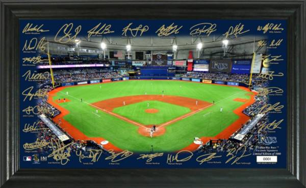 Highland Mint Tampa Bay Rays 2020 Signature Field Photo Frame product image