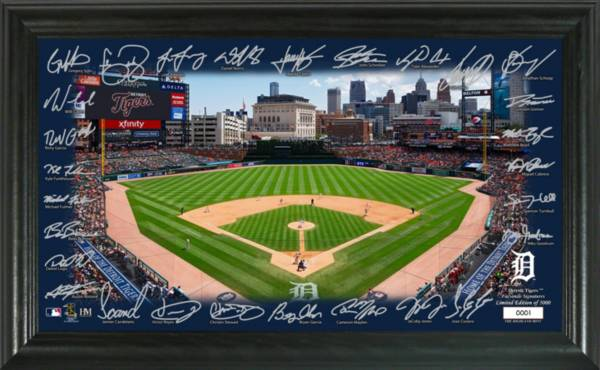 Highland Mint Detroit Tigers 2020 Signature Field Photo Frame product image