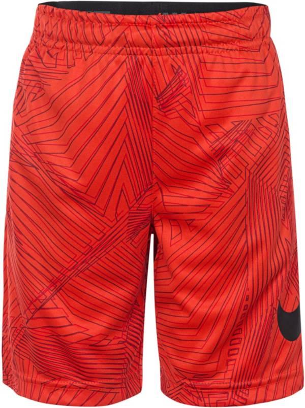Nike Boys' Dri-FIT AOP Shorts product image