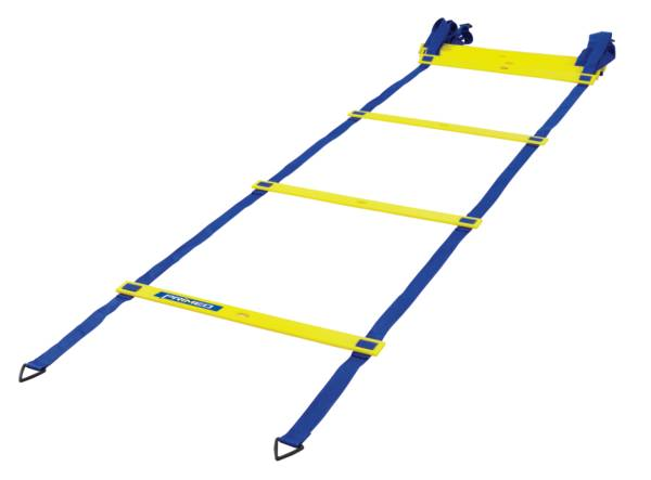 PRIMED Quick Ladder product image
