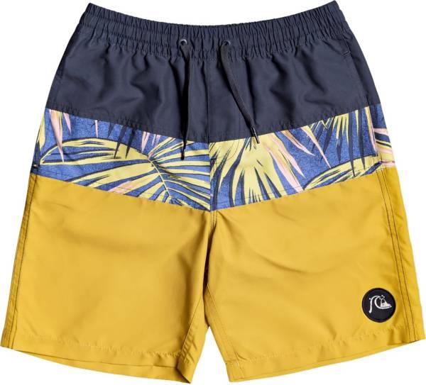 Quiksilver Boy's Sub Tropics Youth 17 Swim Trunks product image