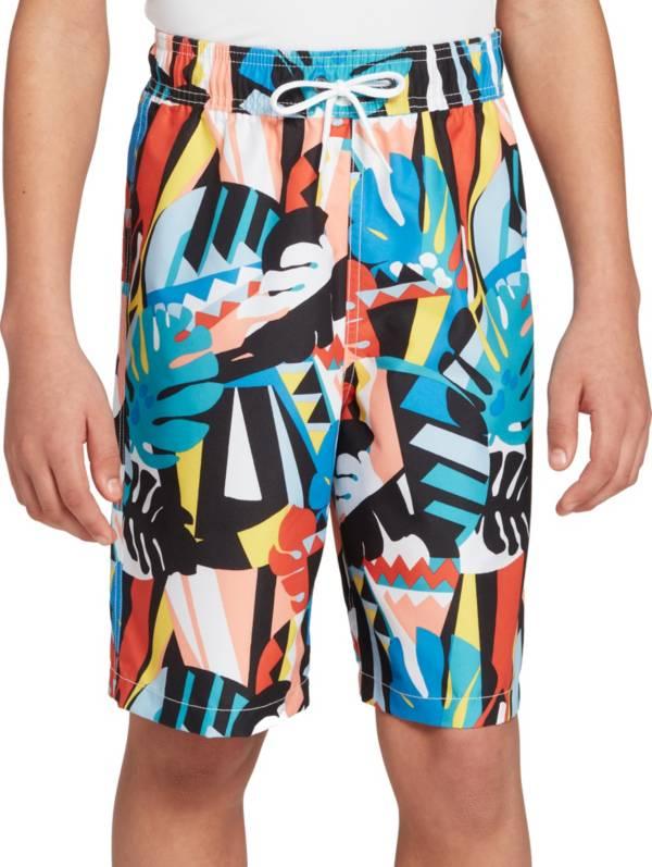 DSG Boys' Blake Print Swim Trunks product image