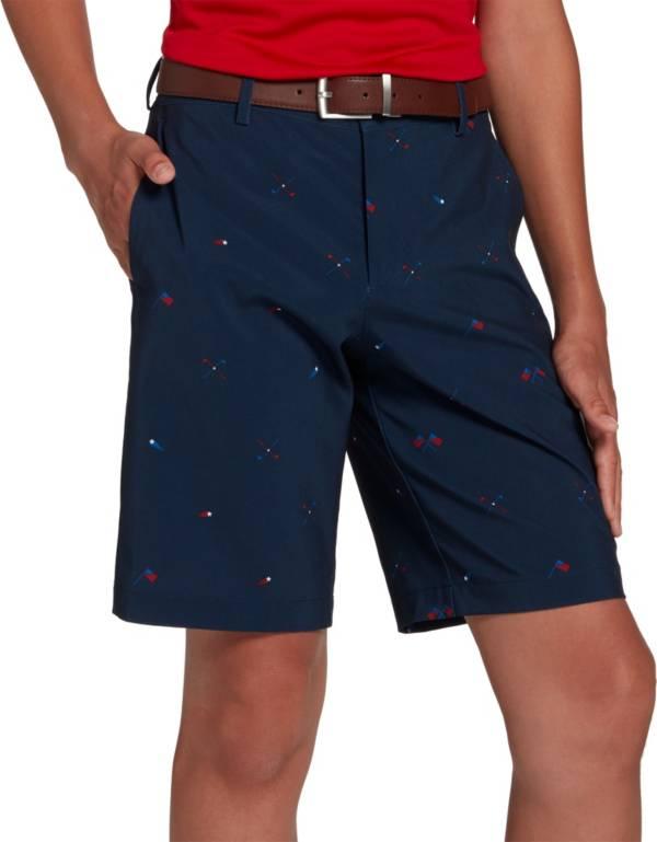 DSG Boys' Conversational Golf Shorts product image