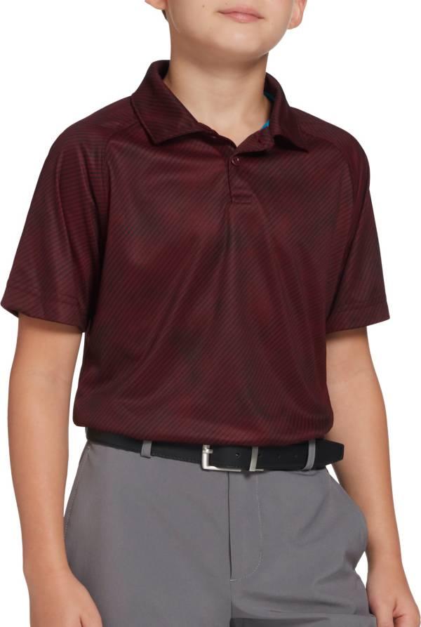 DSG Boys' Diagonal Stripe Golf Polo product image