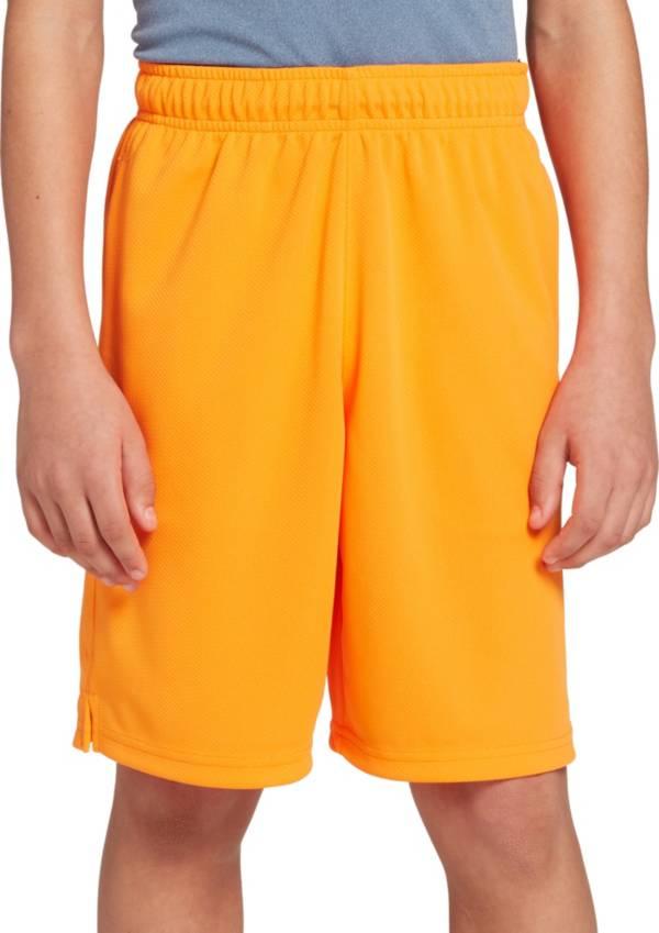 DSG Boys' Mesh Training Shorts product image