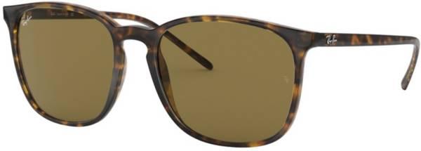 Ray Ban 4387 Sunglasses product image