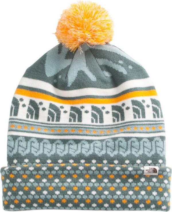 The North Face Adult Ski Tuke Beanie product image