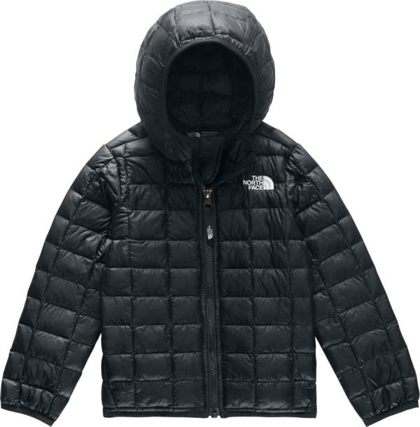 The North Face Toddler Boys' ThermoBall Eco Hooded Jacket product image