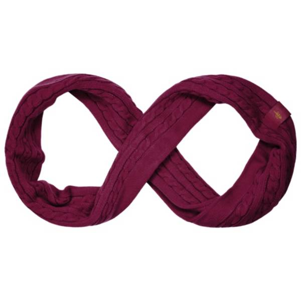 FOCO Cleveland Cavaliers Scarf product image