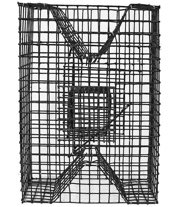 Lee Fisher Pinfish Trap product image