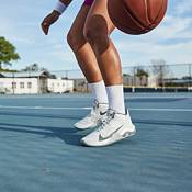 Nike Renew Elevate Basketball Shoes product image