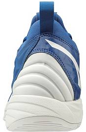 Mizuno Men's Wave Momentum Volleyball Shoes product image