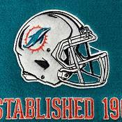 Winning Streak Sports Miami Dolphins Stadium Evolution Banner product image