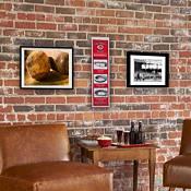 Winning Streak Sports Cincinnati Reds Stadium Evolution Banner product image