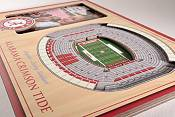 You the Fan Alabama Crimson Tide 3D Picture Frame product image