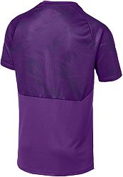 reputable site f0107 75d1f PUMA Men's Manchester City Purple Training Jersey