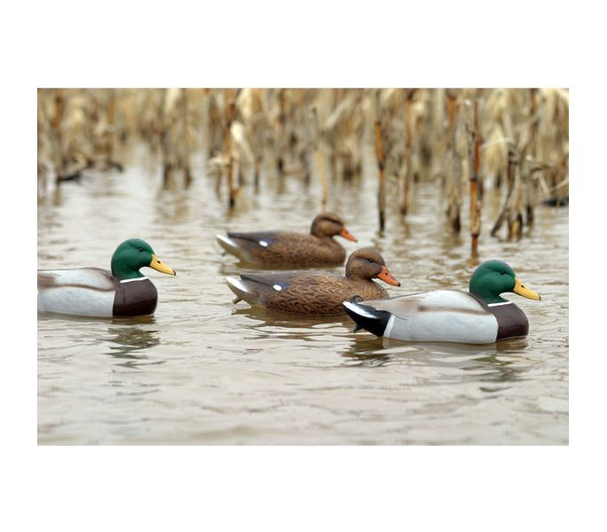 Flambeau Mallard Decoys 12 Pack Waterfowl Outdoor Hunting Ducks Hens Drakes NEW