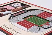 You the Fan Utah Utes Stadium Views Desktop 3D Picture product image